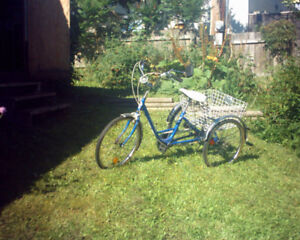 NORCO 5 SPEED TRICYCLE