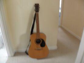 Acoustic Guitar Encore , W255 model.
