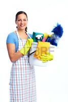 Domestic Cleaner Available