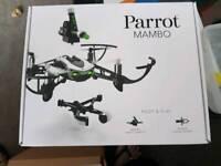 Parrot Mambo