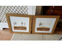 2 x large gold framed pictures