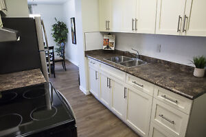 Renovated 3 BR Suite - Ideal for Families