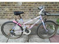 Girls / small adult raleigh bike