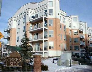condo for rent off Whyte (82) Ave NW