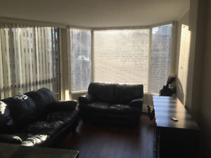 Semi-Furnished Renovated Studio - Downtown Van