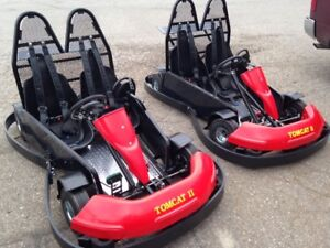 Double seater GO Kart  wth 5.5 Hp engine