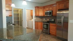 Basement Bedroom Rental in Timberlea ~ Move in ready