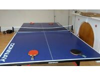 Donnay Table Tennnis table (open to offers)