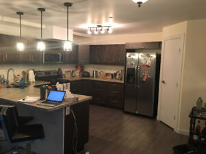 Large Room + Own Bathroom for Rent Oct 1