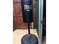 Free standing punchbag
