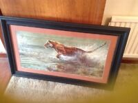 Large tiger picture