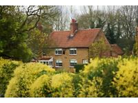 Mid week break in Sherwood Forest: White Horse Cottage in Wellow 4-8 September @ £380