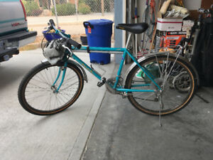 21 speed Mountain bicycle.