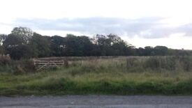 10 acres of land suitable for horses