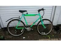 Raleigh mountain bike large frame