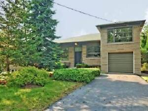 4 Bdrm Home-Renovated-Finished Basement - Private Yard