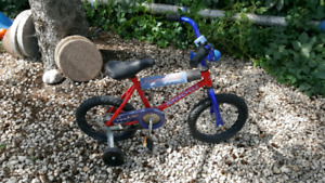 Toddler Boy's Training  Bike