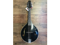 Brand New Mandolin