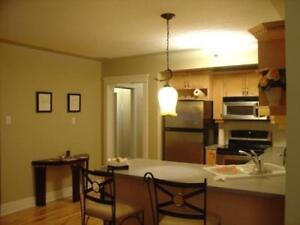 FULLY FURNISHED 2 BEDROOM CONDO IN MISSION (utilities incl.)