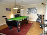 Fantastic SAM Atlantic League Pool Table