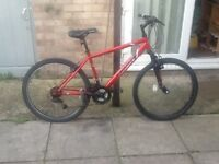 Feud bike in great condition £35 can deliver for petrol26 wheel 18 frame 18 gears no offers