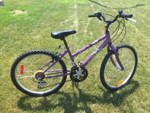 "Next mountain bike, 24""wheels"
