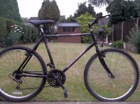 Mans Raleigh Bike (Gravity)