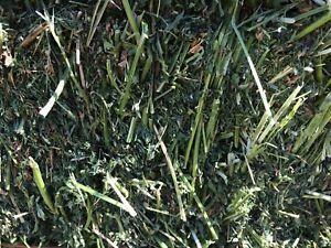 Alfalfa and alfalfa / grass mix