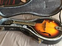 Beautiful mandolin and case (new)