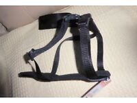 BRAND NEW Good Quality & Comfortable Black Dog Car Harness/Walking Harness - Medium Size Dog,Histon