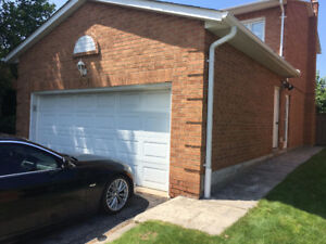 RENOVATED 1 BEDROOM BASEMENT APARTMENT IN NEWMARKET