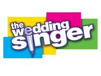 Singer/Guitarist For Wedding Reception