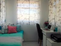 sunny cozy room, shepherd's bush