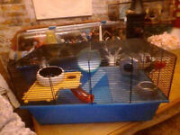 large hamster/mouse cage and setup