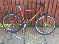 Muddy Fox Gents/ youths Mountain bike 21 gears