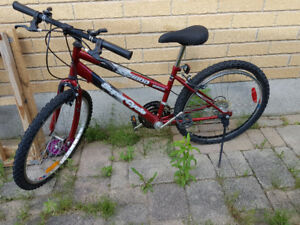 Two bikes for sale (girls) - big ones EACH for $75, small $25