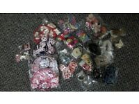 Hair Accessories - Last Lot Clearance