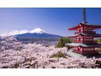 Japanese lessons - Beginner to Intermediate
