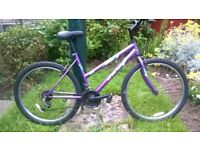 Straight forward no frills Ladies Mountain Bike in Full Working Order with Good Brakes and Gears