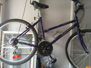 RALEIGH MATTERHORN bike rarely used