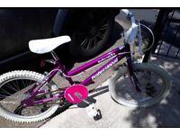 20in kids bike