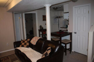 Southside Suite Available Sept 1 - Close to College & Hospital