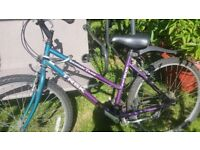 small Lady bike for sale