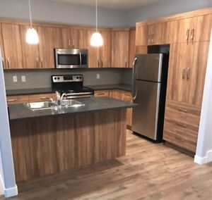 Brand new 2 bedroom, 2 bathroom unit in the heart of downtown