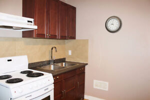 BACHELOR APARTMENT DOWNTOWN-All utility included