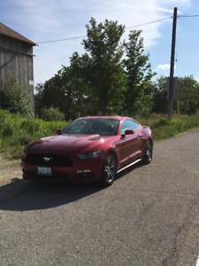 2016 Ruby Red Ford Mustang Ecoboost Premium