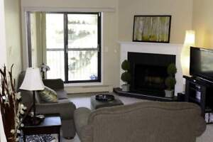 Broadview Meadows Apartments - 2 Bedroom Apartment for Rent...