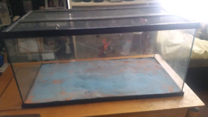 40 gallon reptile tank! ( located westbank)