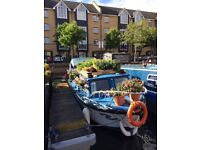 Beautifully renovated 26' river cruiser, inboard Ford engine and fully fledged vegetable garden!