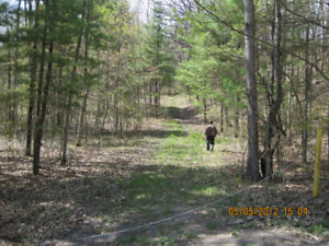 Land for Sale, Hunting, Recreational, Building